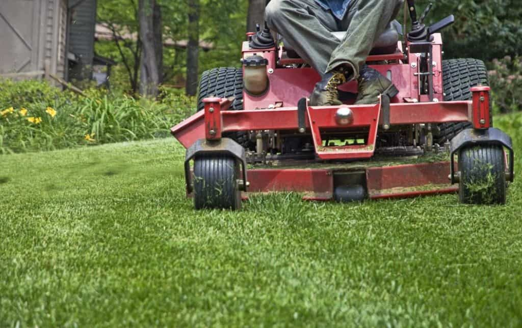 what-to-expect-from-lawn-maintenance-services