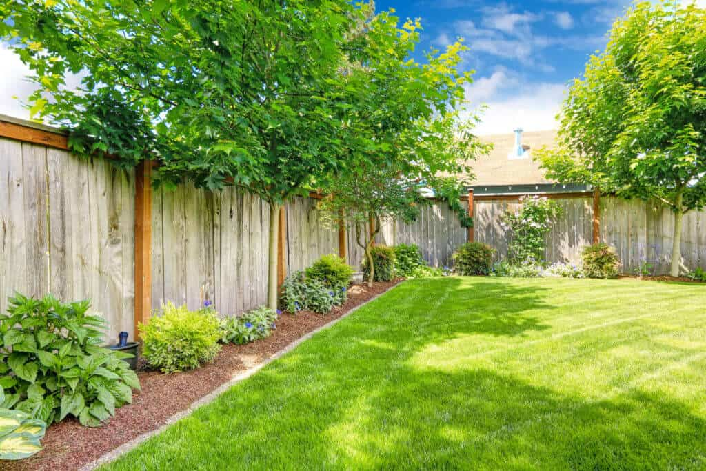 wooden fence in manicured yard