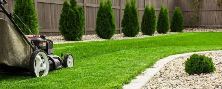 Lawn Maintenance Guide