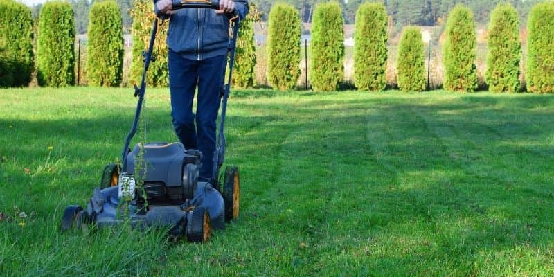 Mowing Lawn Tips