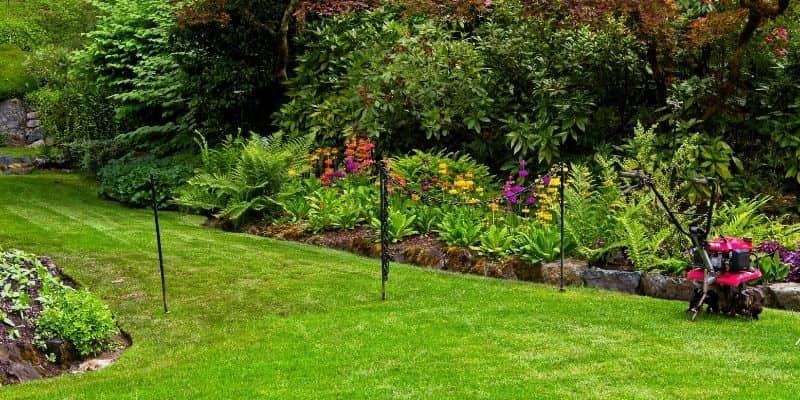 Springtime Maintenance Lawn Care Tips