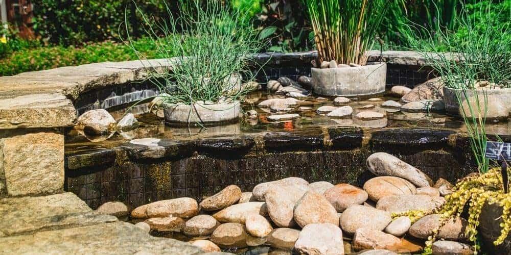 backyard stream waterscaping