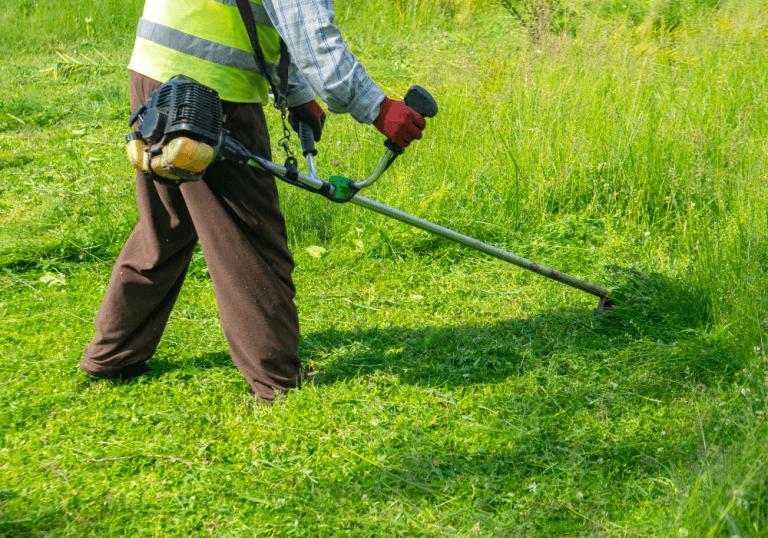 Weedeating and Edging