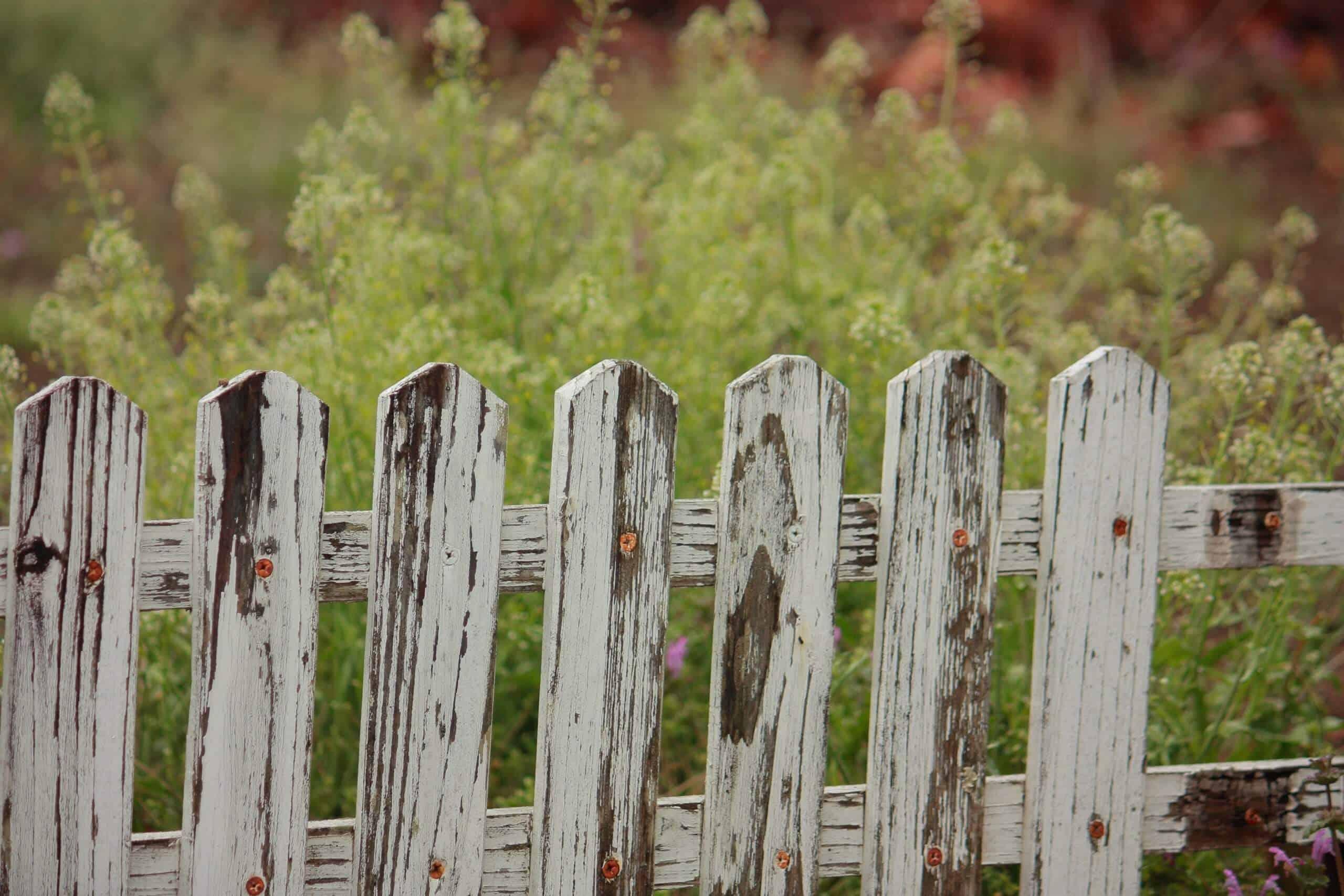 Maintaining Decorative Fences