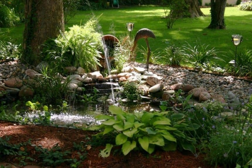 Front Yard with Tranquil Water Feature